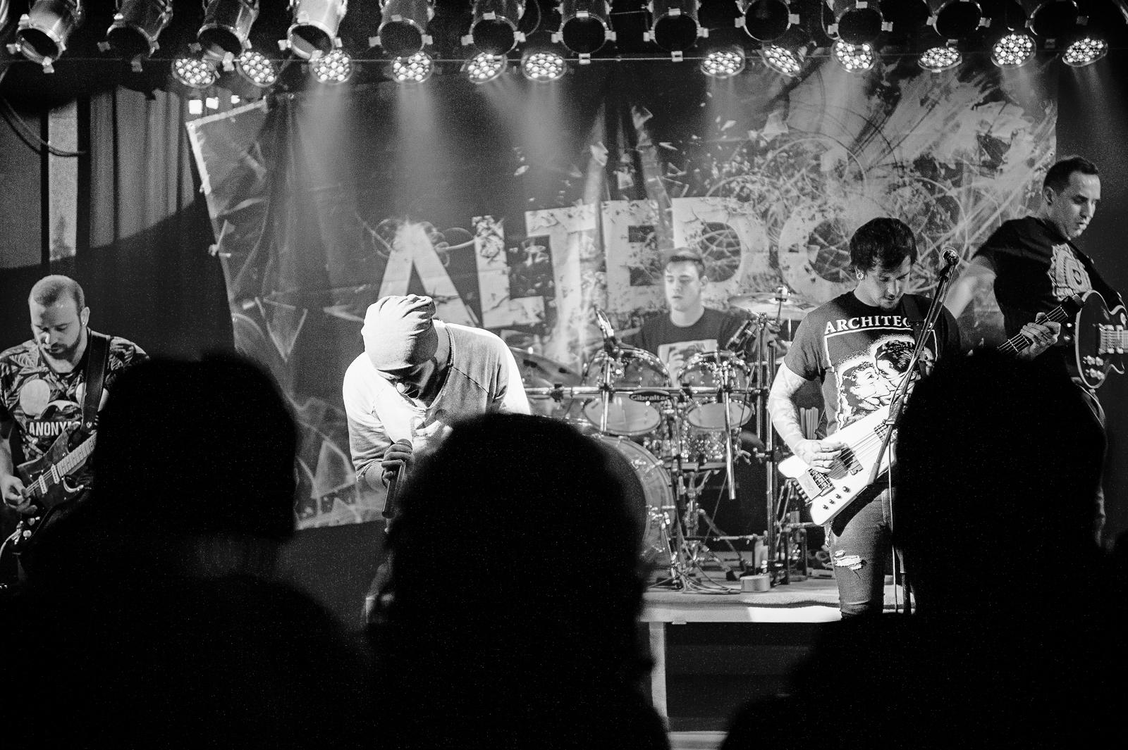Altedo - 2015