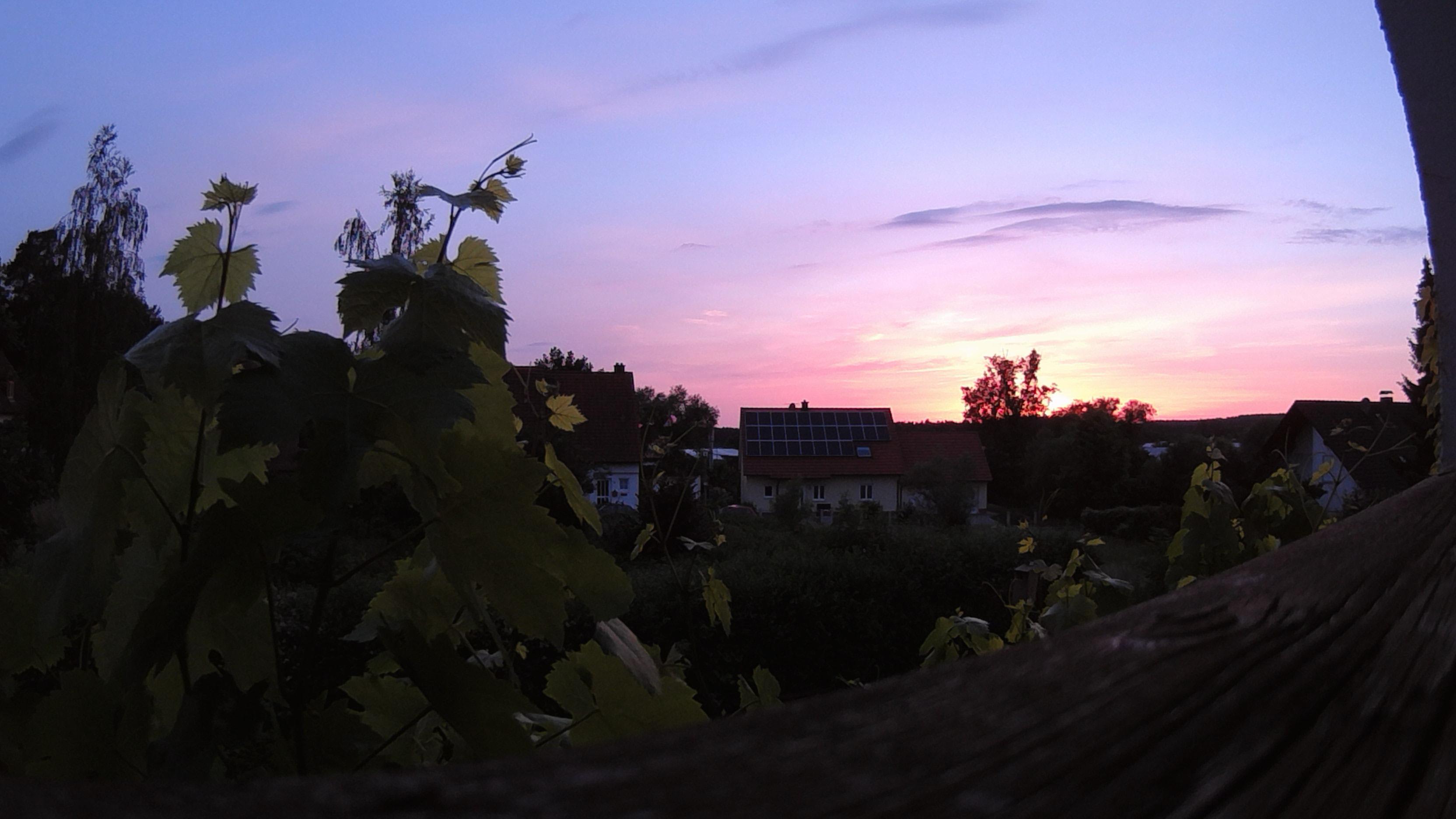 Polaroid CUBE - Abendsonne